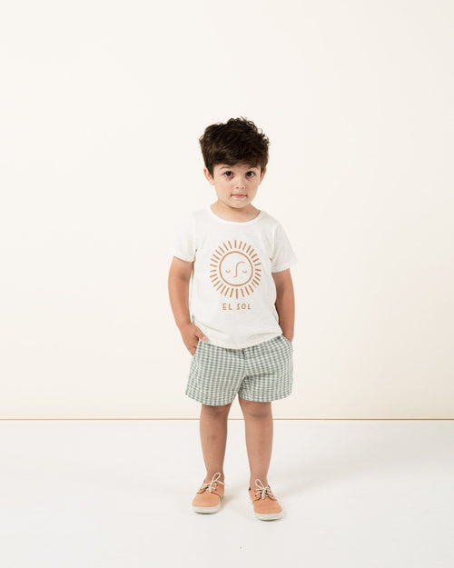 Rylee and cru drawstring blue gingham shorts for boys