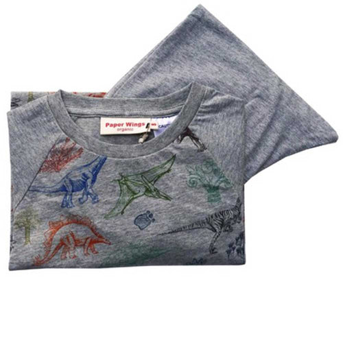 Paper Wings Organic Colorful Dinosaurs Boys Loungewear Set