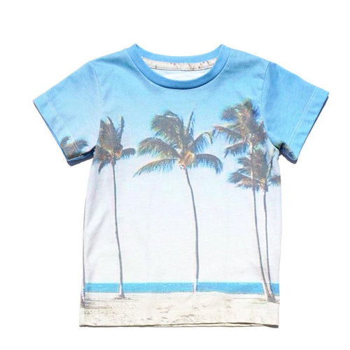 Boys graphic shorts sleeve tee with palm tree and beach graphic