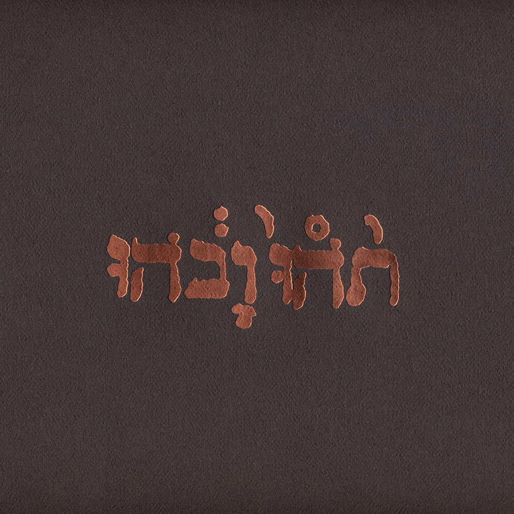 GODSPEED YOU! BLACK EMPEROR - Slow Riot For New Zero Kanada (Vinyle) - Constellation