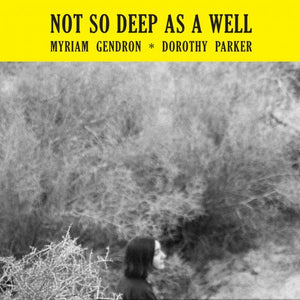 MYRIAM GENDRON ‎– Not So Deep As A Well (Vinyle) - Feeding Tube