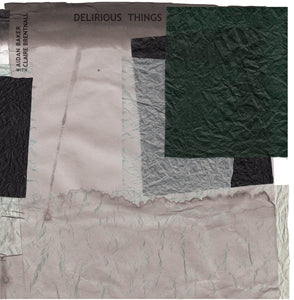 AIDAN BAKER WITH CLAIRE BRENTNALL ‎– Delirious Things (Vinyle) - Pleasence