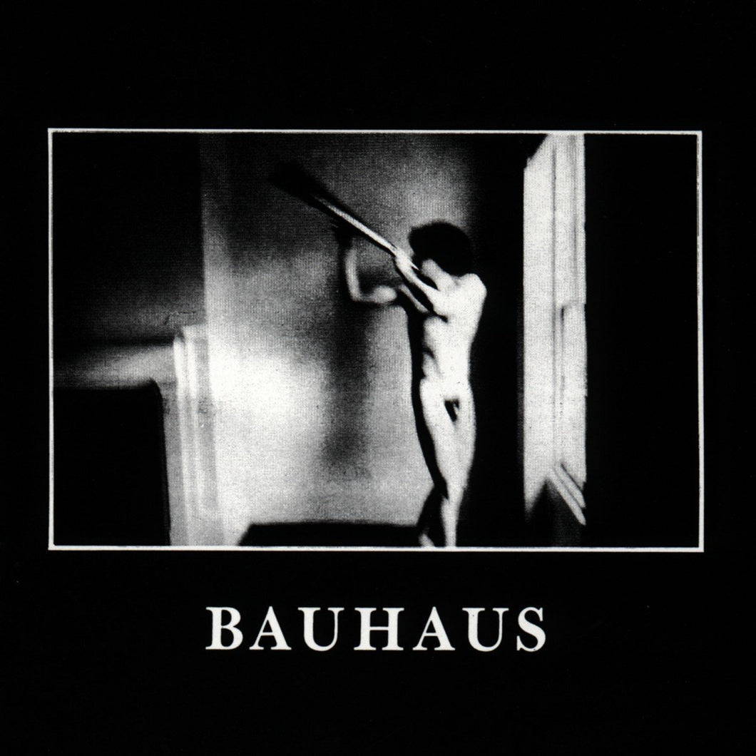 BAUHAUS - In The Flat Field 40th anniversary (Vinyle) - 4AD
