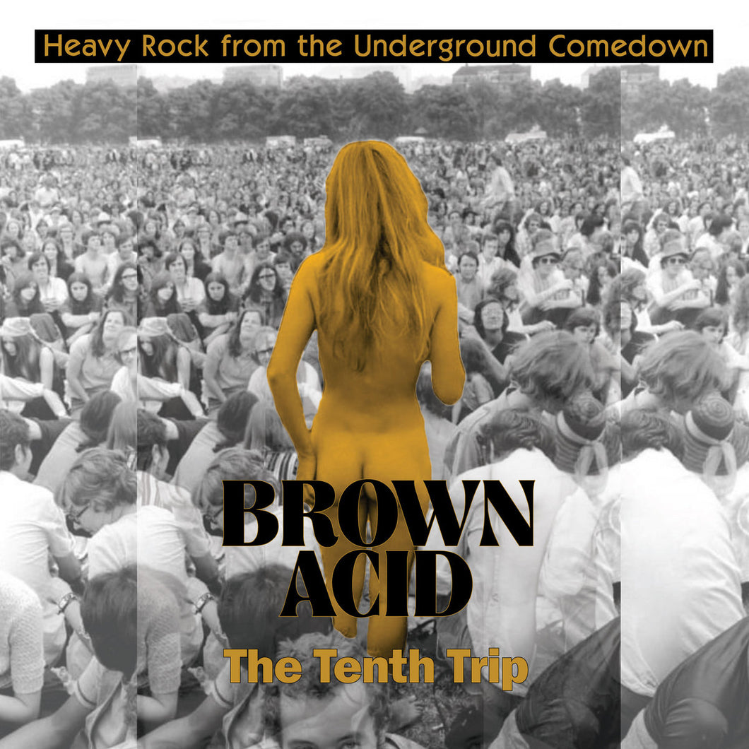 ARTISTES VARIÉS - Brown Acid : The Tenth Trip (Vinyle)