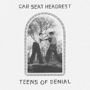 CAR SEAT HEADREST - Teens Of Denial (Vinyle) - Matador