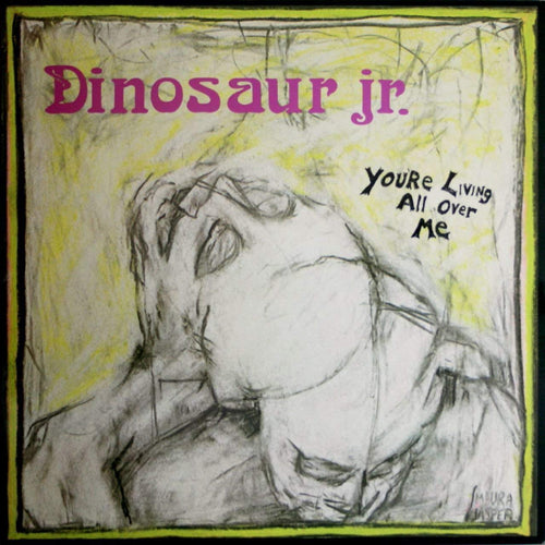 DINOSAUR JR - You're Living All Over Me (Vinyle) - Jagjaguwar