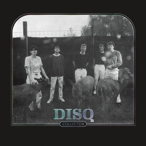 DISQ - Collector (Vinyle) - Saddle Creek