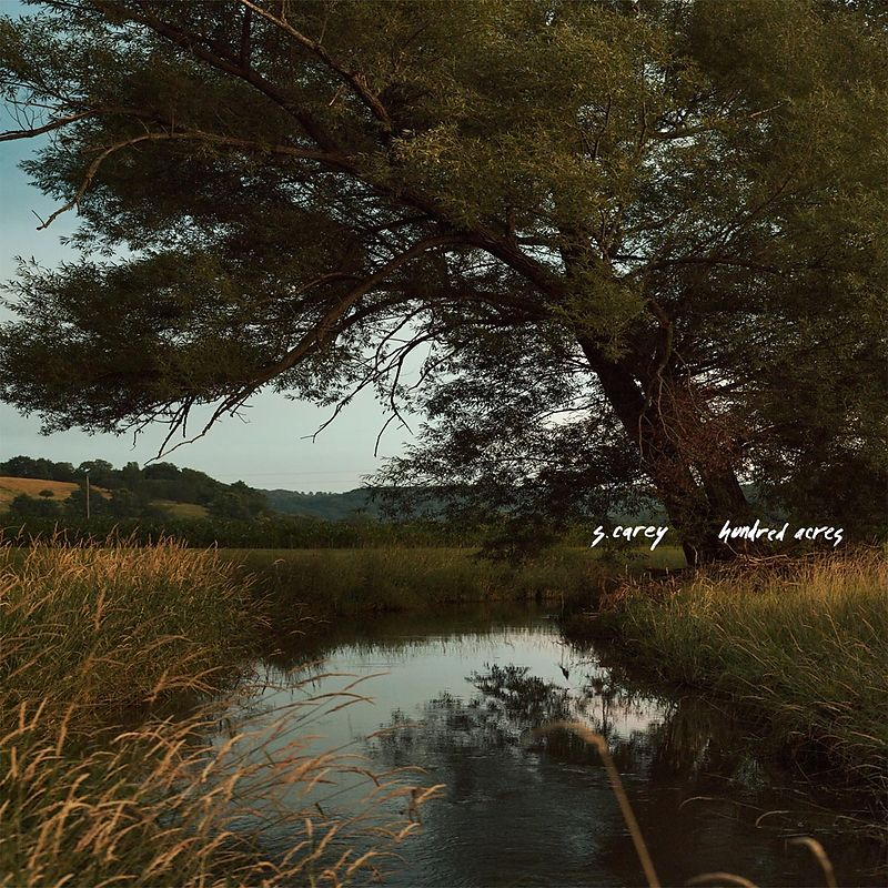 S. CAREY - Hundred Acres (Vinyle)