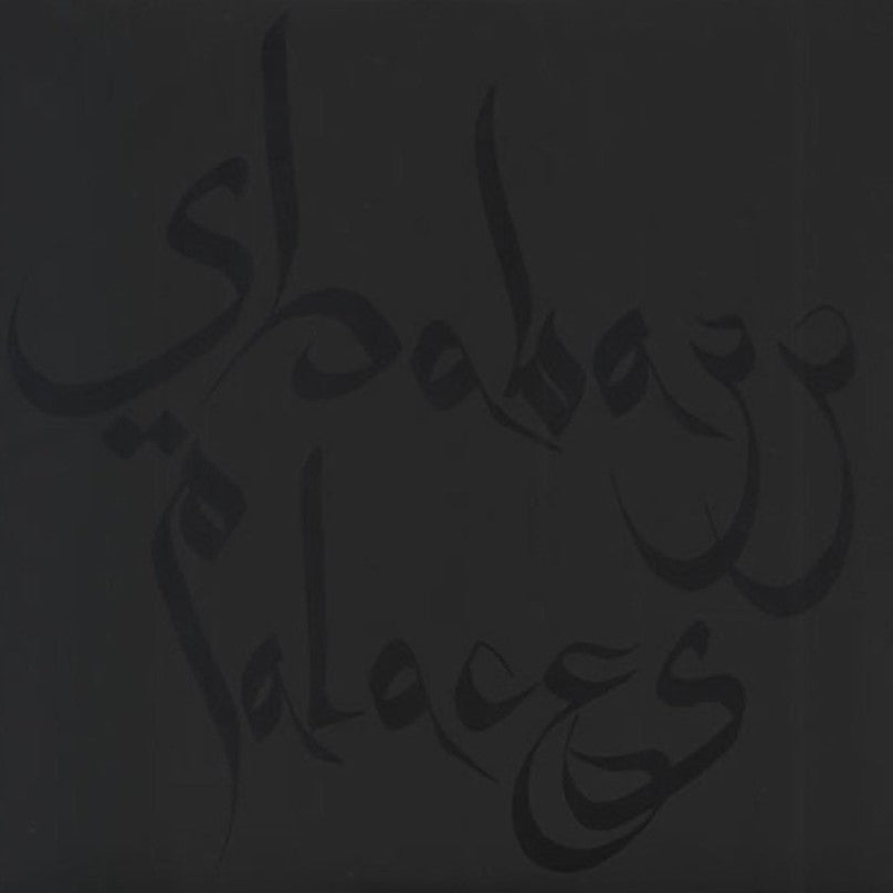 SHABAZZ PALACES - Black Up (Vinyle)
