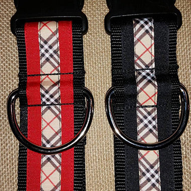 Custom Dog Collars For Male Dogs