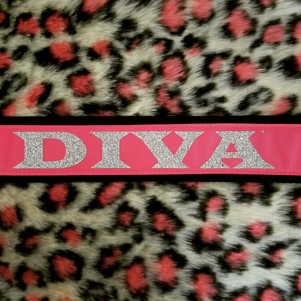 "2"" wide DIVA Dog Collar"