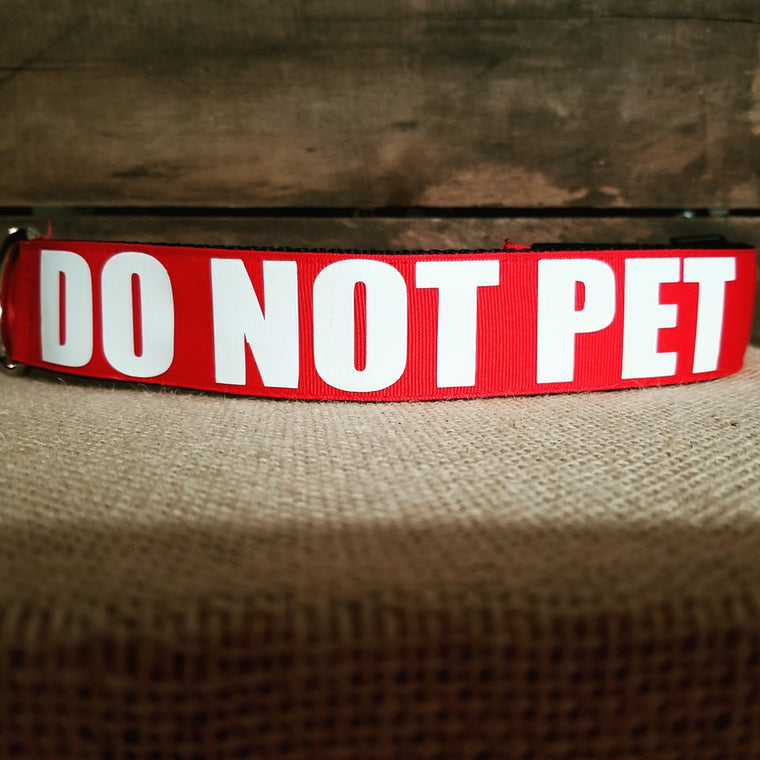 do not pet dog collar caution