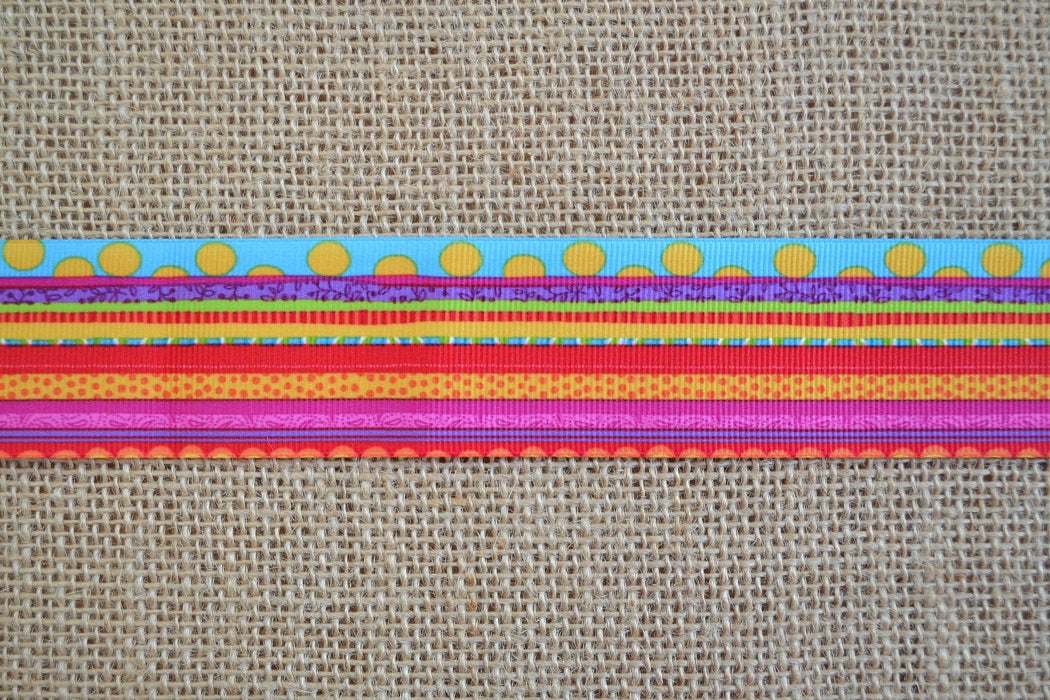 dog collar rainbow multicolor confetti xl