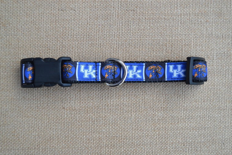 dog collar kentucky wildcats small blocks
