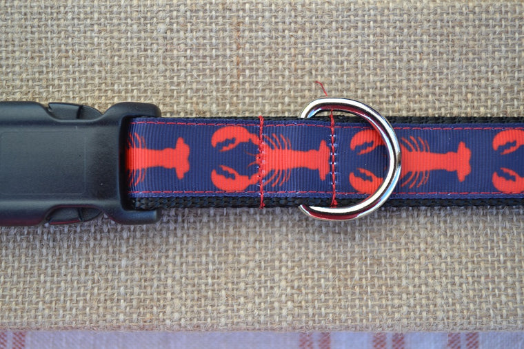 dog collar preppy red lobster