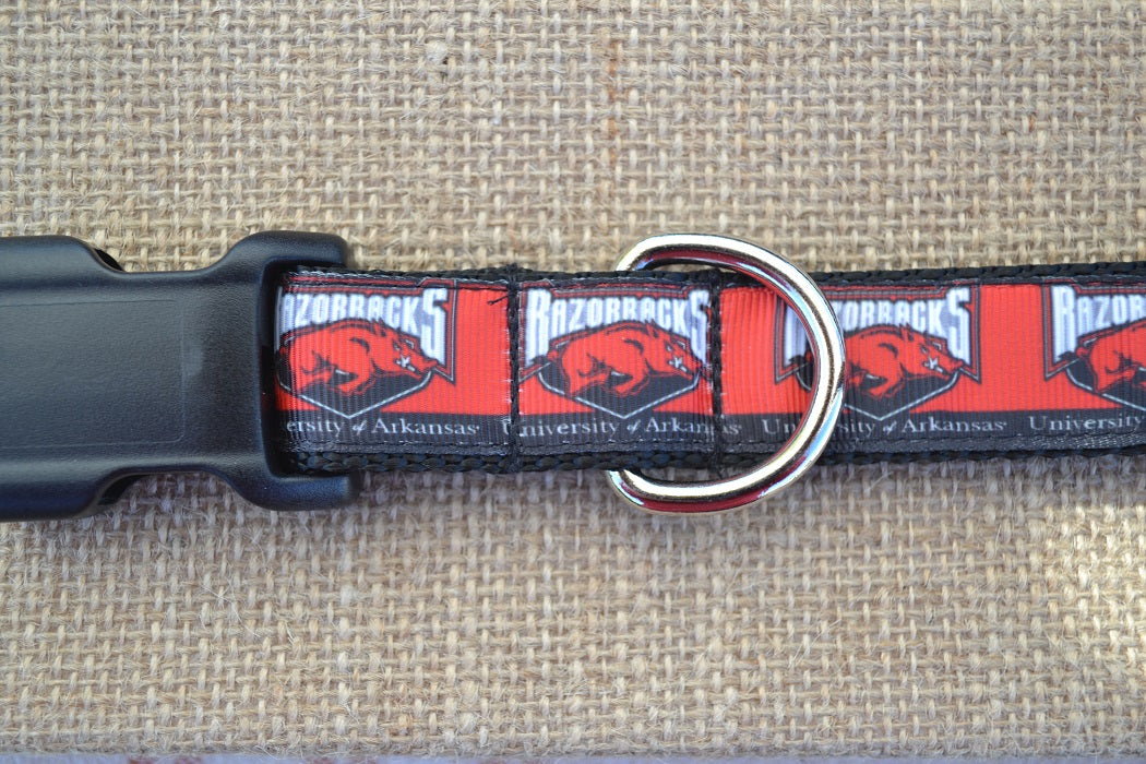 dog collar arkansas razorbacks