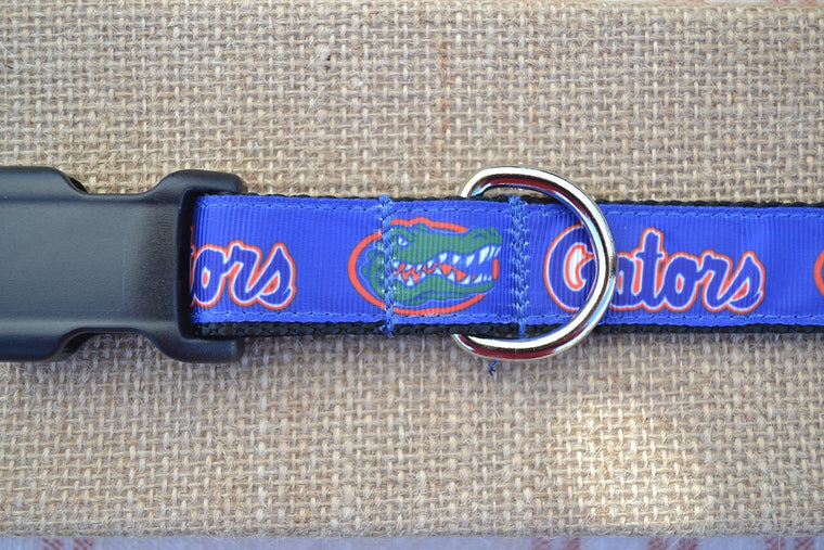 dog collar university of florida gators blue