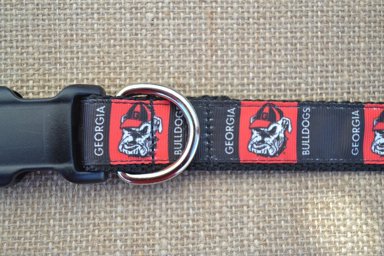 dog collar gerogia bulldog blocks