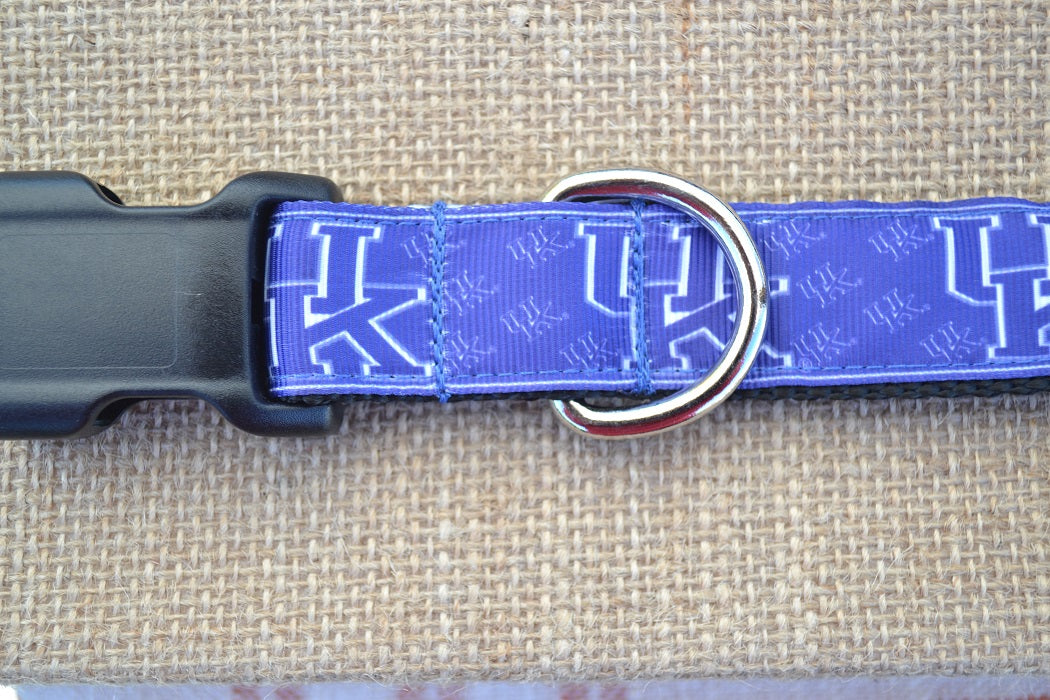 dog collar kentucky wildcats