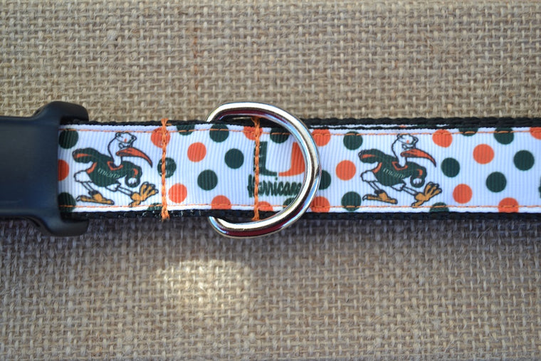 dog collar miami hurricanes polka dot