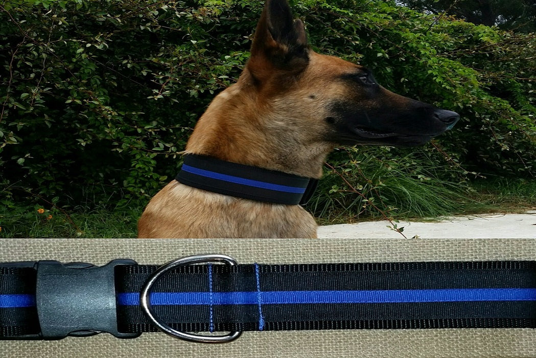 dog collar thin blue line police xl