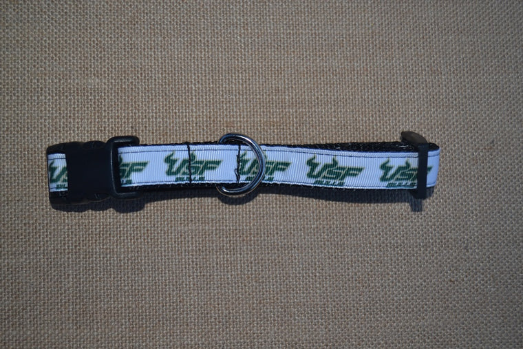 dog collarf usf south florida bulls small