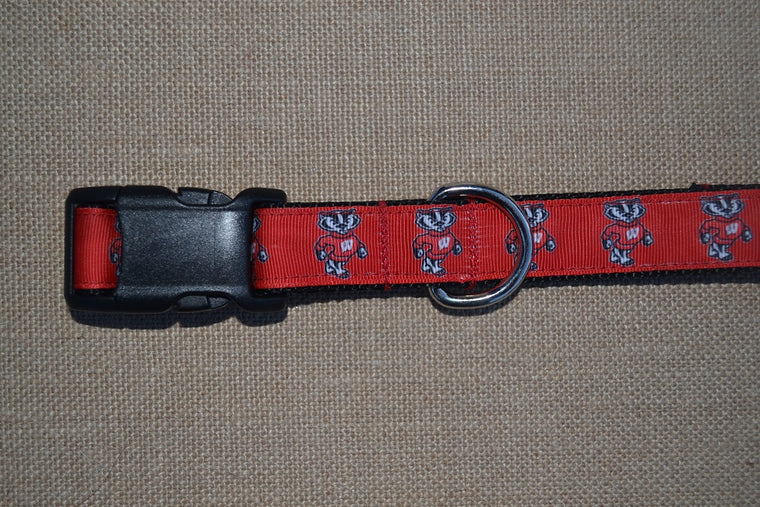dog collar wisconsin badgers ncaa