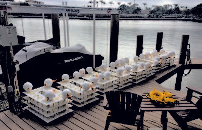 Mini Artificial Reef at Your Dock