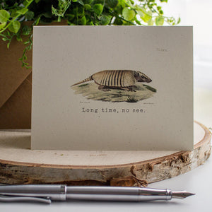 Armadillo Card - Long Time No See Friendship Card occasion cards Sunshine and Ravioli