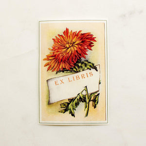 autumn mum book plates - set of 10 bookplates Sunshine and Ravioli