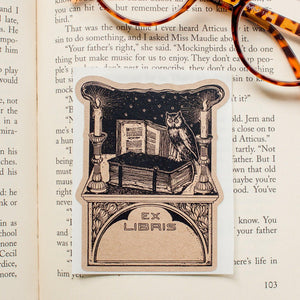 Owl in Library Book Plate Stickers - set of 10 bookplates Sunshine and Ravioli