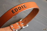 Engraved Leather Dog Collar