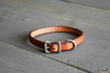 Handmade Leather Cat Collar