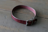 harness leather dog collar