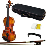 Paititi 4/4 Full Size VN07A Solid Wood Ebony Fitted Acoustic Violin