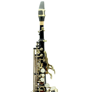 Sky Band Approved Bb Black Lacquered Soprano Saxophone with Case and Care Kit