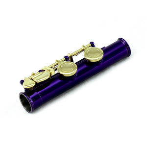 Sky C Foot Flute Purple/Gold Open Hole Band Approved