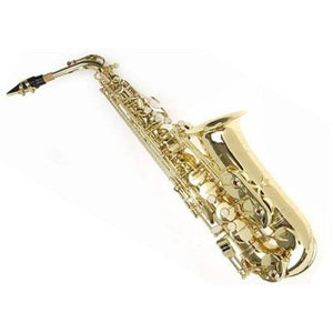 Sky E Flat Lacquer Alto Saxophone with F# Key, Case and 10 Reeds, Gold