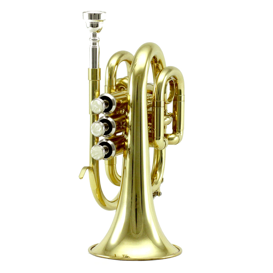 Sky Band Approved Gold Lacquer Plated Brass Bb Pocket Trumpet