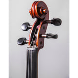 Sky Music FL004--EB-9R300 Ebony Fitted 4/4 Full Size Acoustic Violin Red Oil Varnish