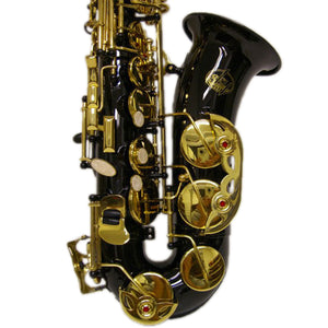 Sky E Flat Lacquer Alto Saxophone with F# Key, Case and 10 Reeds, Black