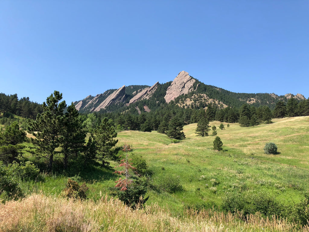 boulder flatirons with the shred dog pack