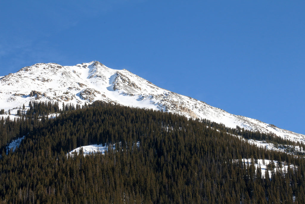 Kendall Mountain