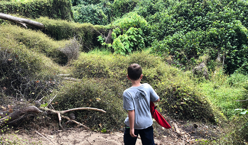 Kid exploring the Presidio