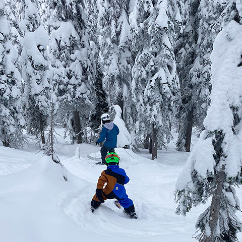 ski trees with a buddy