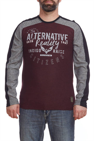 Raglan long sleeve t-shirt with print