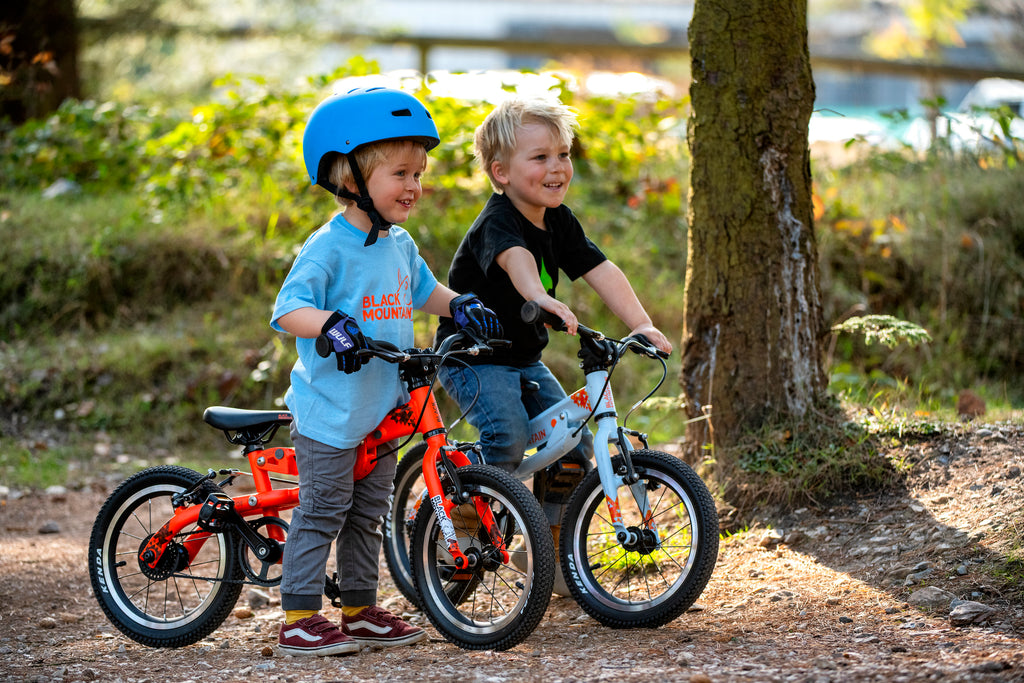 Boys on bikes in the forest