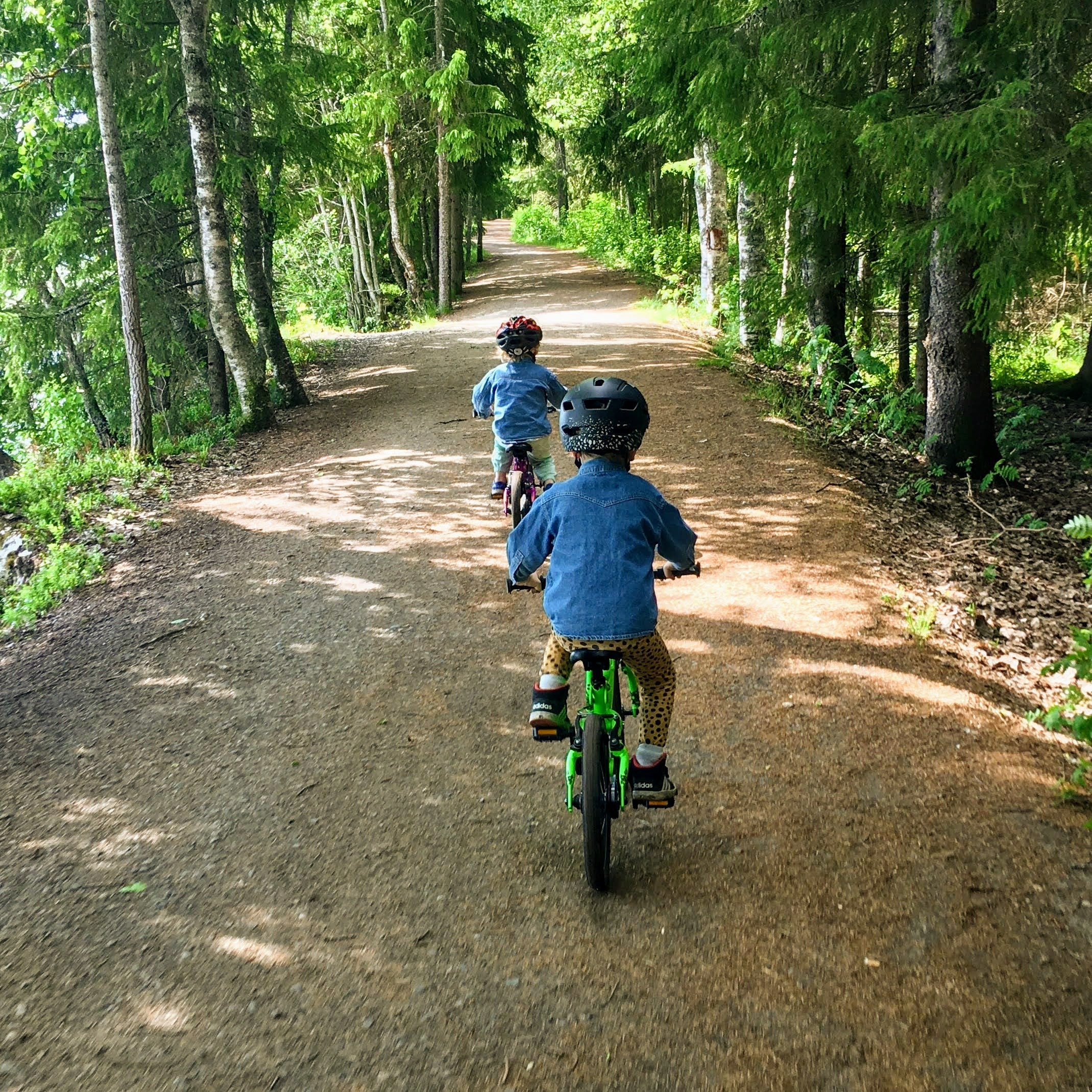 Two boys on bikes in the woods