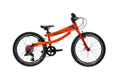 20 inch growing kids bike