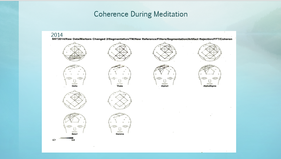 Coherence During Meditation 2014